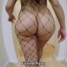 Fishnet Pawg