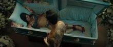 Alexandra Daddario's Music Video Plot
